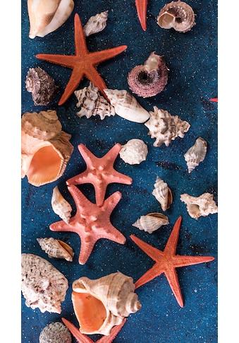 good morning Strandtuch »Sea Star«, (1 St.), mit Seesternen und Muscheln kaufen