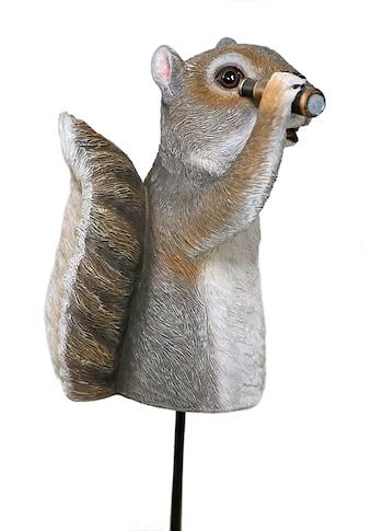 Casa Collection by Jänig Tierfigur »Eichhörnchen mit Teleskop (Gartenstecker) Höhe... kaufen