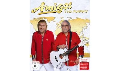 Musik-CD »110 Karat-Fanbox / Amigos« kaufen