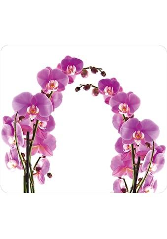 WENKO Herd-Abdeckplatte »Orchideenblüte« kaufen