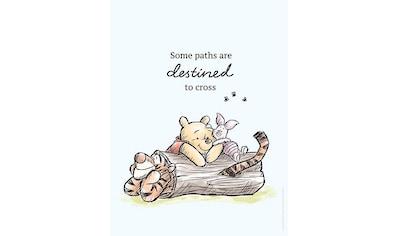 Komar Poster »Winnie Pooh Path«, Disney, Höhe: 70cm kaufen