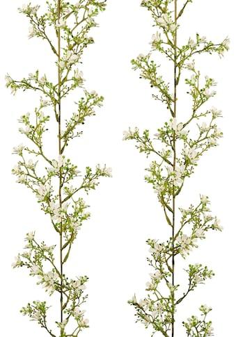 Creativ green Kunstgirlande »Jasmingirlande« (2 Stück) kaufen