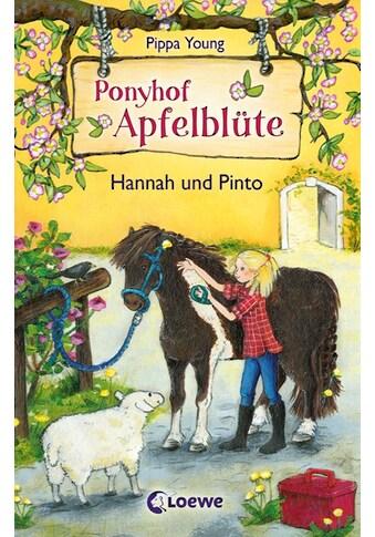 Buch »Ponyhof Apfelblüte 4 - Hannah und Pinto / Pippa Young, Sandra Lojahn« kaufen