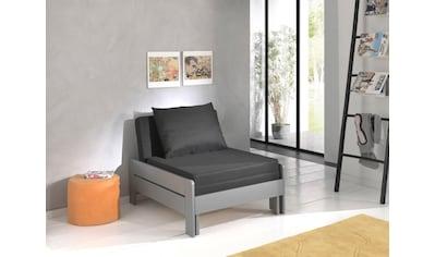 Vipack Einzelbett »Pino«, ausklappbar zum Gästebett kaufen