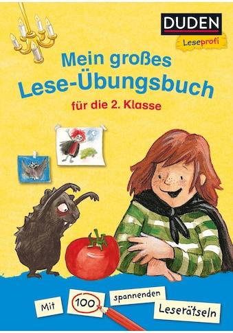 Buch »Duden Leseprofi - Mein großes Lese-Übungsbuch für die 2. Klasse / Christine Goppel, Jérôme Cottin, Christine Goppel, Stephan Pricken« kaufen