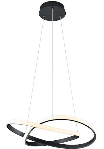 TRIO Leuchten LED Pendelleuchte »LED-Pendel MIRA«, LED-Board, 1 St., Warmweiß,... kaufen