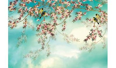 Komar Fototapete »Sakura«, bedruckt-Wald-geblümt, ausgezeichnet lichtbeständig kaufen