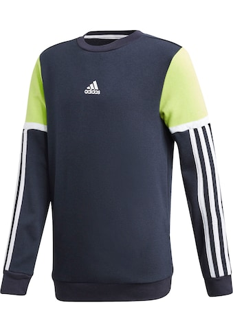 adidas Performance Sweatshirt »BOLD CREW« kaufen