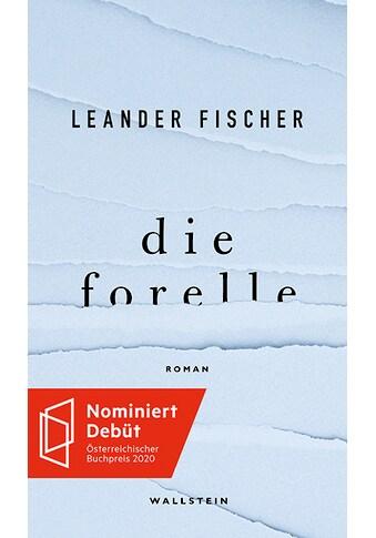 Buch »Die Forelle / Leander Fischer« kaufen