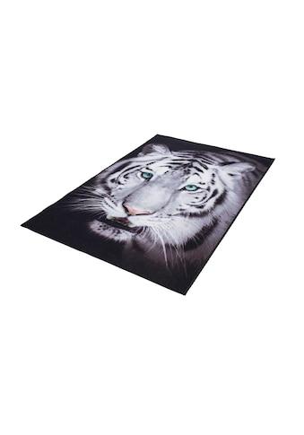 Andiamo Teppich »Weißer Tiger«, rechteckig, 4 mm Höhe, Wohnzimmer kaufen