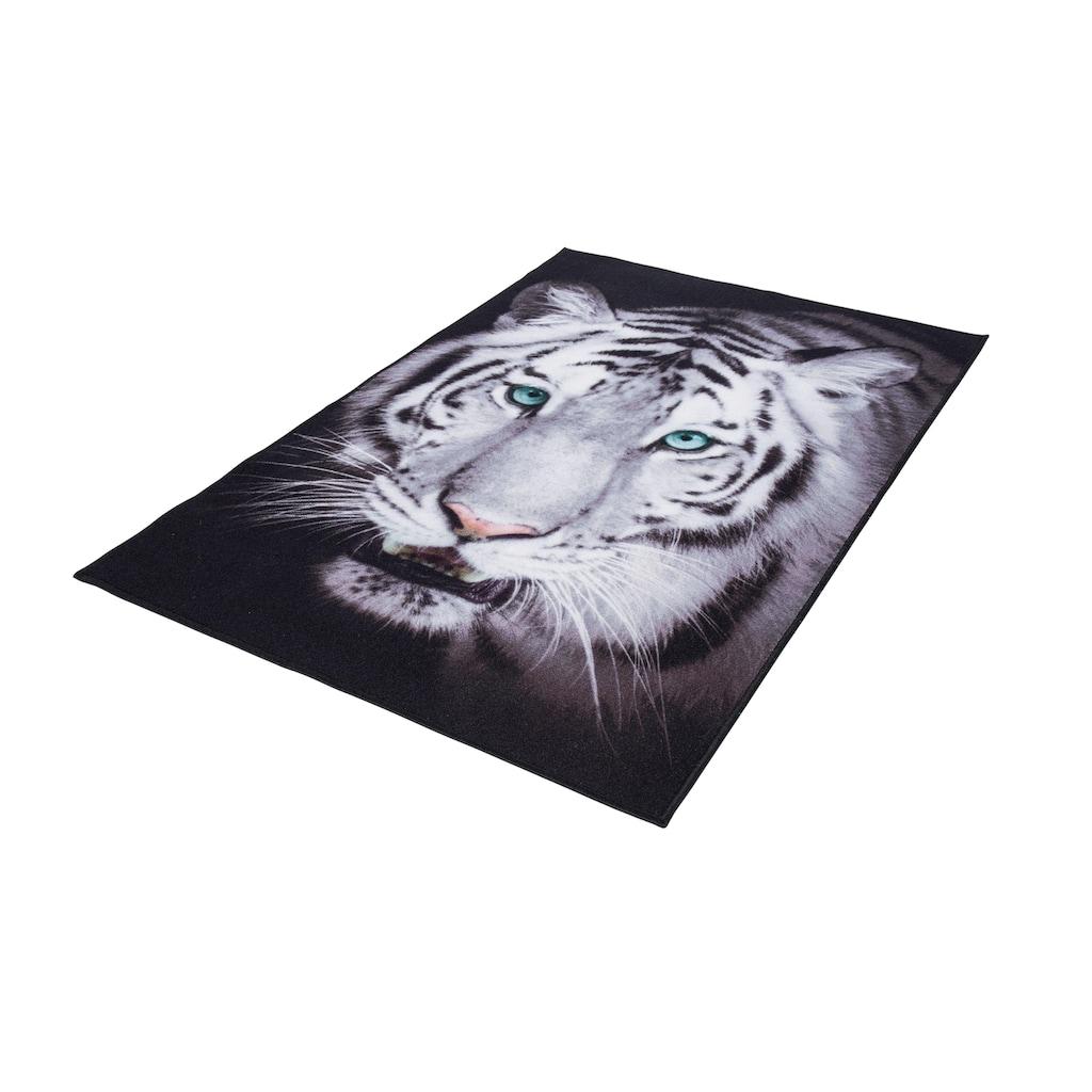Andiamo Teppich »Weißer Tiger«, rechteckig, 4 mm Höhe, Wohnzimmer