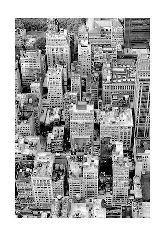 Komar Poster »Roof Top«, Städte, Höhe: 50cm kaufen