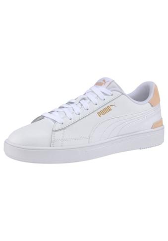 PUMA Sneaker »Puma Smash Pro« kaufen
