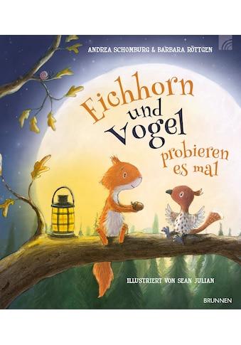 Buch »Eichhorn und Vogel probieren es mal / Andrea Schomburg, Barbara Röttgen, Sean... kaufen