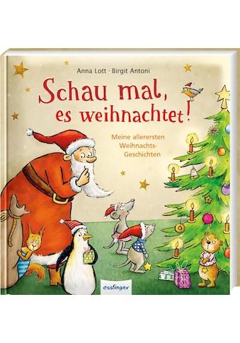 Buch »Schau mal, es weihnachtet! / Anna Lott, Christa Kempter« kaufen