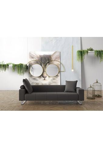 machalke® 3-Sitzer »groove«, mit GRATIS Ledertasche kaufen