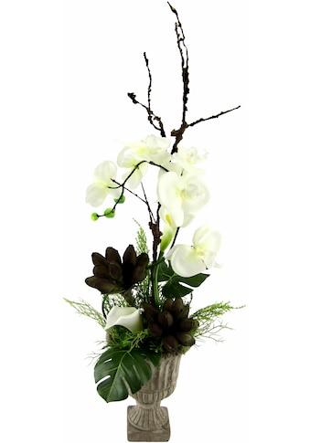 I.GE.A. Kunstpflanze »Orchidee« (1 Stück) kaufen
