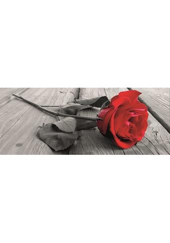 Home affaire Leinwandbild »Rose on the wooden floor« kaufen