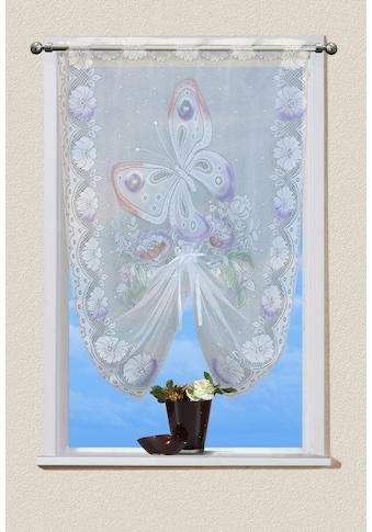 VHG Scheibengardine »Schmetterling« kaufen