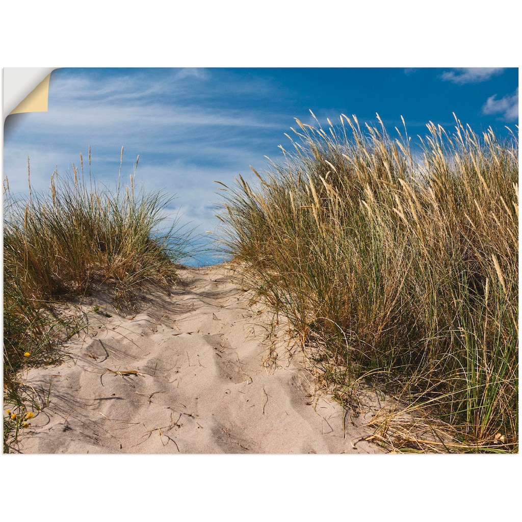 Artland Wandbild »In den Dünen Dänemarks II«, Strand, (1 St.), in vielen Größen & Produktarten - Alubild / Outdoorbild für den Außenbereich, Leinwandbild, Poster, Wandaufkleber / Wandtattoo auch für Badezimmer geeignet