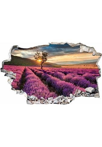 Wall-Art Wandtattoo »Lavendel in der Provence« kaufen