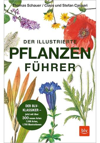 Buch »Der illustrierte Pflanzenführer / Thomas Schauer, Claus Caspari, Stefan Caspari« kaufen