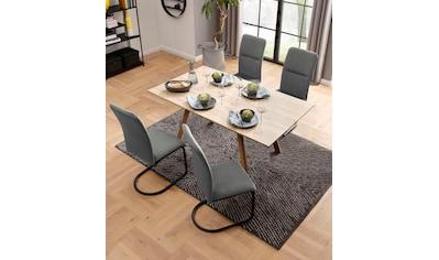 my home Essgruppe »Alex/Freja«, (Set, 5 tlg.), aus Holzwerkstoff, bestehend aus Alex Esstisch 160 cm und 4er Set Freja Stühle in Samtstoff kaufen