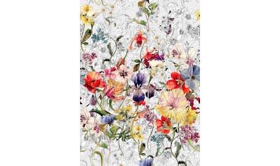 Komar Fototapete »Flora«, bedruckt-floral-geblümt, ausgezeichnet lichtbeständig kaufen