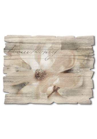 Artland Holzbild »Magnolie_Detail« kaufen