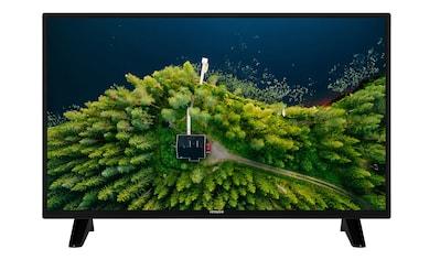 Hitachi LED - Fernseher (32 Zoll, HD ready, Triple Tuner) »H32E1001« kaufen