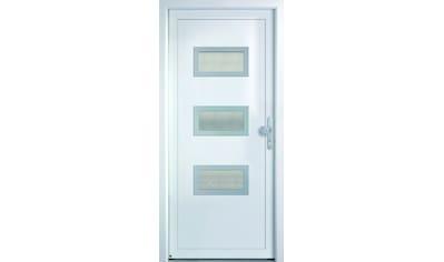 KM Zaun Haustür »K368D«, nach Wunschmaß, rechts oder links, mit Griffgarnitur kaufen