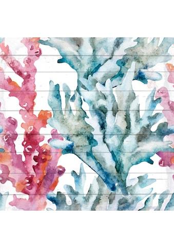 QUEENCE Holzbild »Bunte Korallen«, 40x40 cm Echtholz kaufen