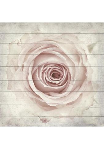 Home affaire Holzbild »Rose von oben« kaufen