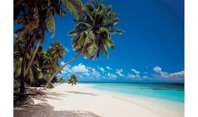 Komar Fototapete »Maldives«, bedruckt-Wald-geblümt, ausgezeichnet lichtbeständig kaufen