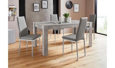 Essgruppe »Lynn160/Brooke«, (Set, 5 St.), Tisch mit 4 Stühlen kaufen