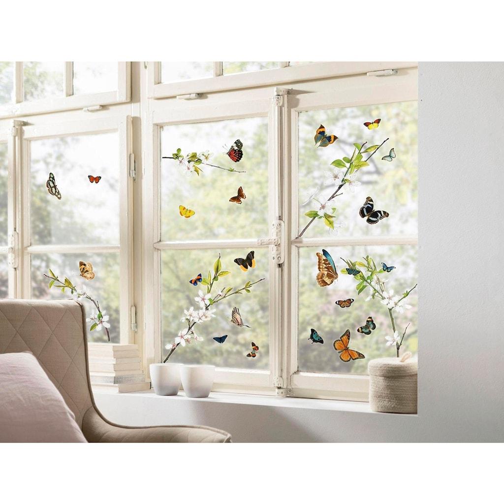 Komar Fensterbild »Cheerful«