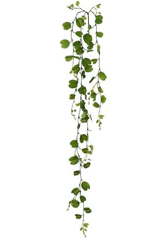 Creativ green Kunstgirlande »Bauhiniablattgirlande« kaufen
