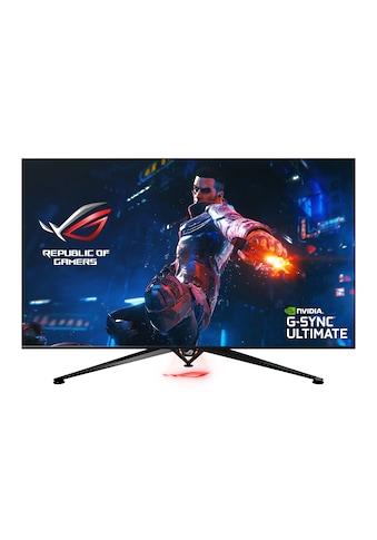 Asus PG65UQ Gaming Monitor kaufen