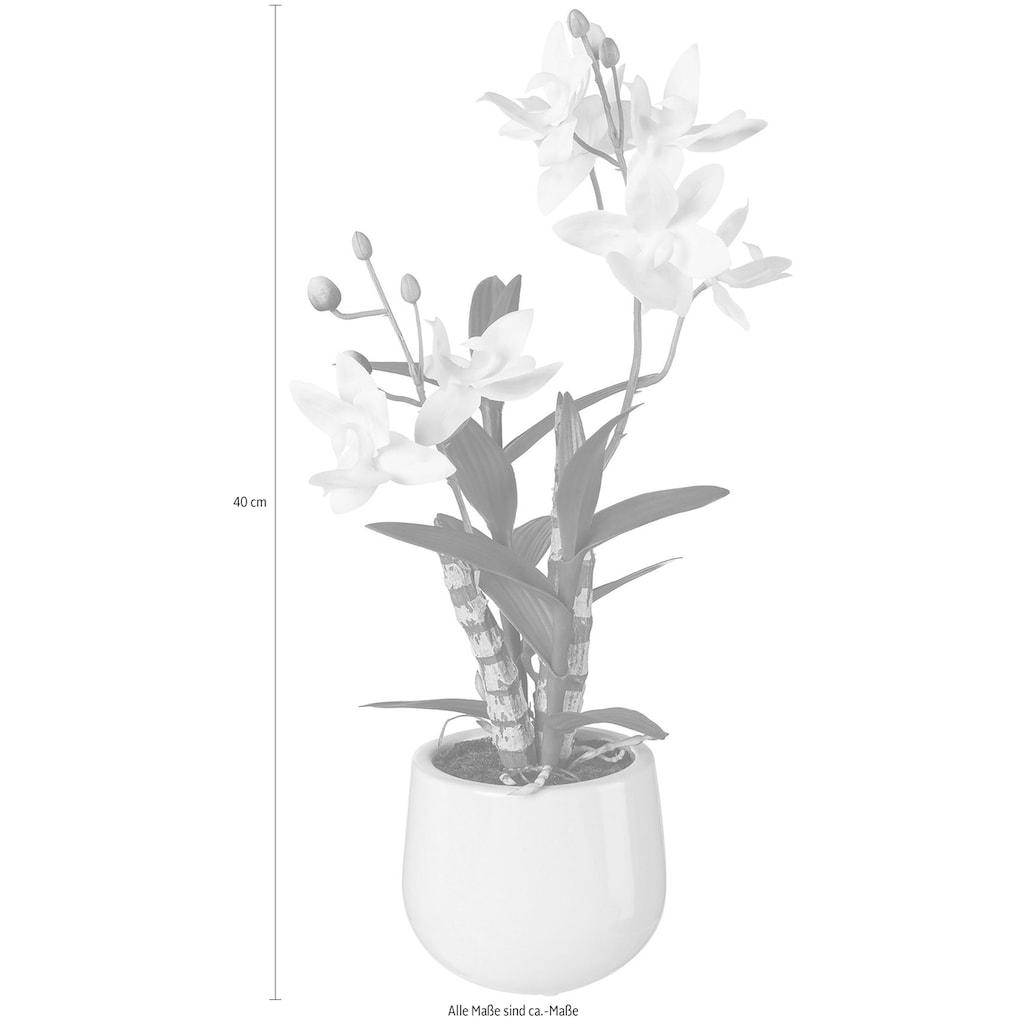 Creativ green Kunstpflanze, Japanorchidee im Keramiktopf, Real Touch