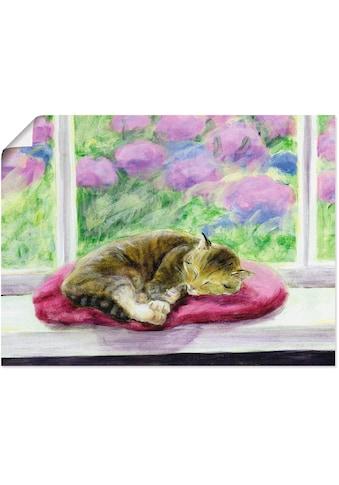 Artland Wandbild »Katze auf Gartenfensterbank«, Haustiere, (1 St.), in vielen Größen &... kaufen