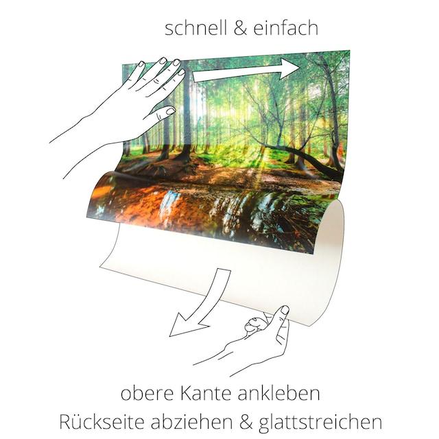 Artland Wandbild »Kirschen mit Spritzwasser«