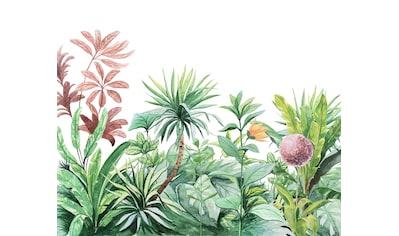 Komar Fototapete »Terrain«, bedruckt-Comic-Retro-mehrfarbig, BxH: 300x250 cm kaufen