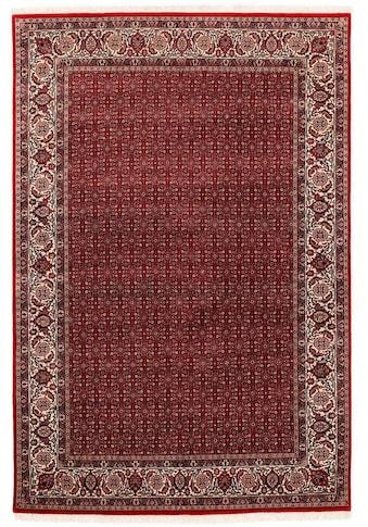 OCI DIE TEPPICHMARKE Orientteppich »Sultan Herati«, rechteckig, 5 mm Höhe, handgeknüpft, mit Fransen, Wohnzimmer kaufen