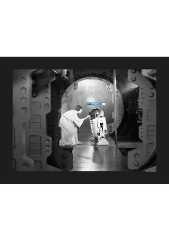 Komar Poster »Star Wars Classic Leia R2D2 Upload«, Star Wars kaufen