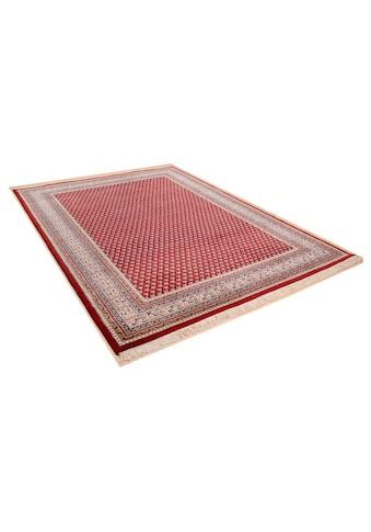 THEKO Orientteppich »Abbas Meraj Mir«, rechteckig, 12 mm Höhe, reine Wolle,... kaufen