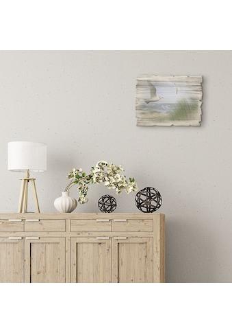 Artland Holzbild »Nordseestrand mit Möwen« kaufen