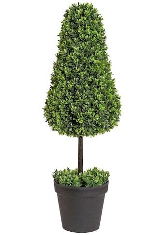 Creativ green Kunstpflanze »Buchsbaumkegel auf Stamm«, im Kunststofftopf kaufen