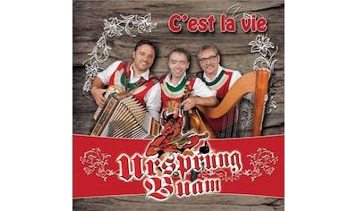 Musik-CD »C'est La Vie / Ursprung Buam« kaufen