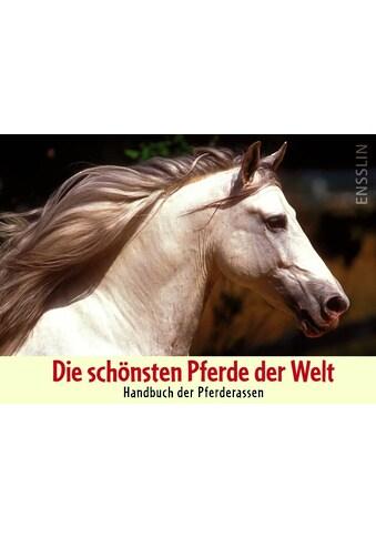 Buch »Die schönsten Pferde der Welt / Judith Dutson, Verena Jochim, Bob Langrish« kaufen