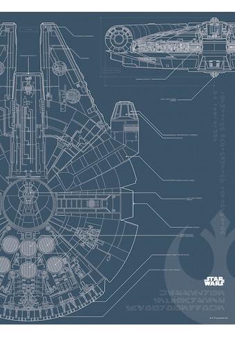 Komar Poster »Star Wars Blueprint Falcon«, Star Wars kaufen